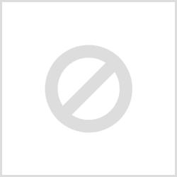Dickinson Fleet Services, LLC